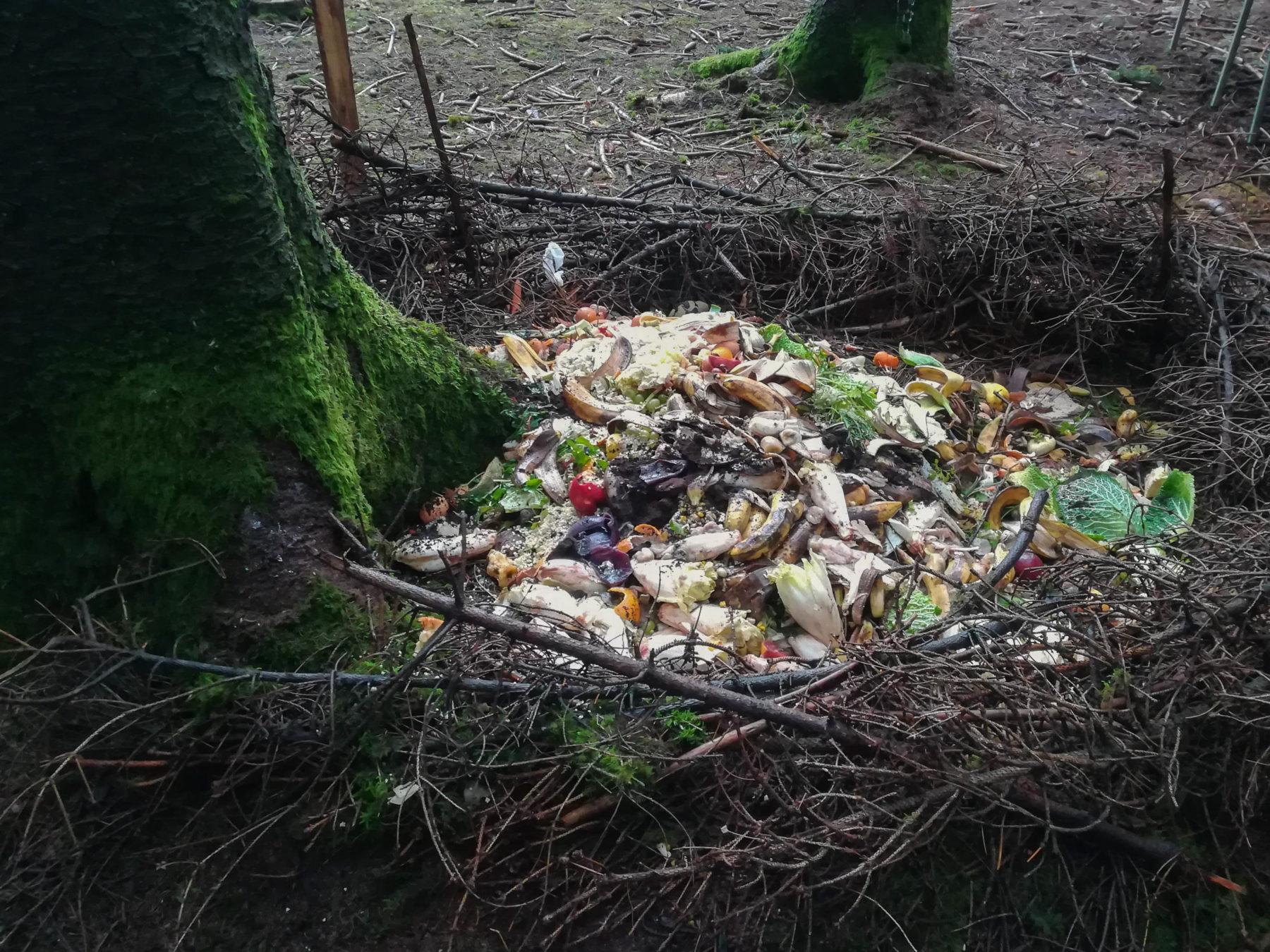Respectueux de l'environnement, les zadistes ont fait un compost