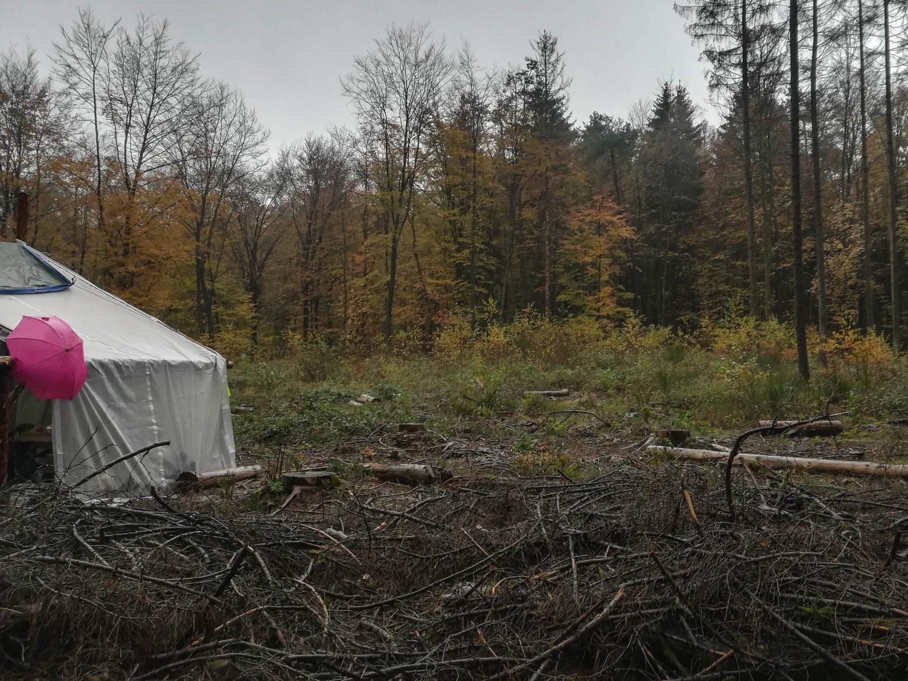 Tente blanche au milieu de la nature sous la grisaille du mois de novembre