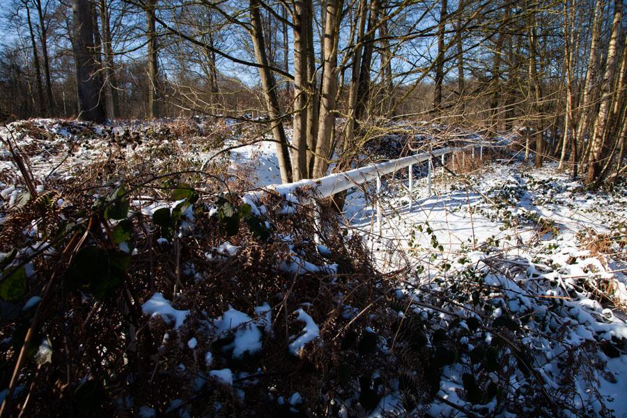Barrière de l'hippodrome dans la Forêt de Soignes