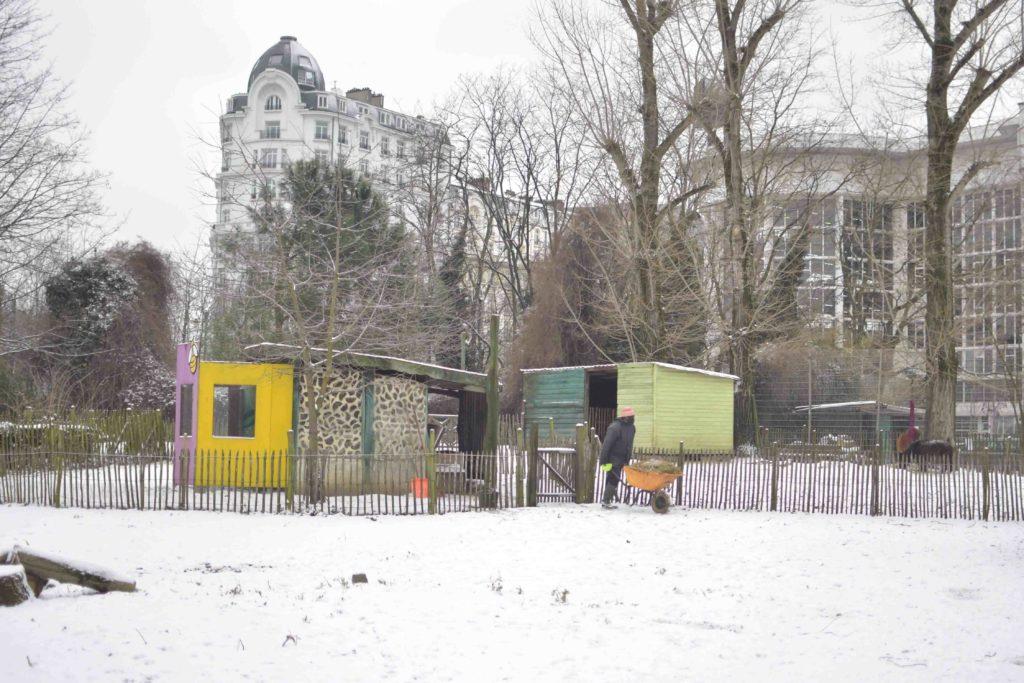 Vue d'ensemble sur les enclos de la ferme pédagogique du Parc Maximilien